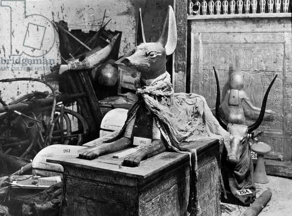 Tutankhamen 's treasure found by Howard Carter, 1922 : egyptian god Anubis symbolised by the black dog (photo Harry Burton)
