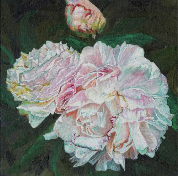 First blooms, 2012, (oil on canvas)