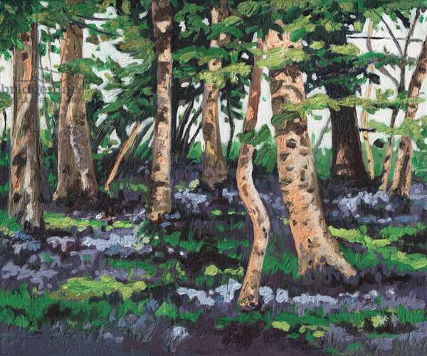 Bluebell Wood, 2009, (oil on canvas)