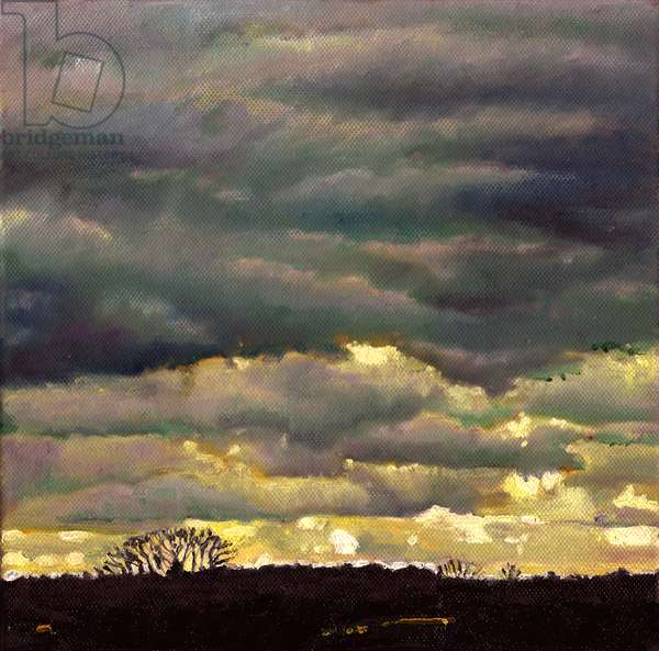 Cloud burst, 2012, (oil on canvas)