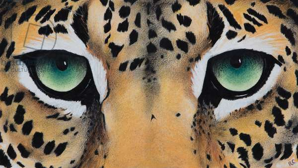 Small leopard Eyes, 2018, (pastel and charcoal on paper)
