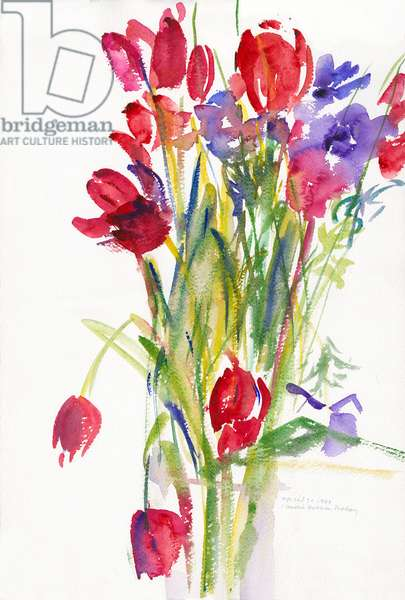 Tulips, 1999, (watercolour on paper)
