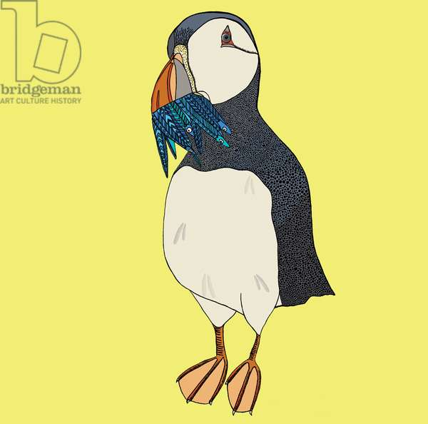 Peter Puffin, 2014, pen and ink, digitally coloured