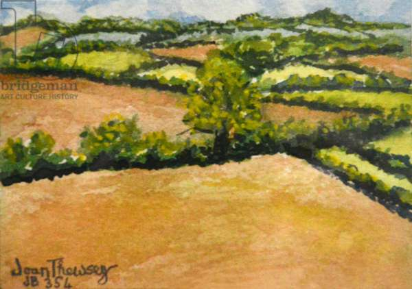 Little Suffolk Landscape,2000 (watercolour)