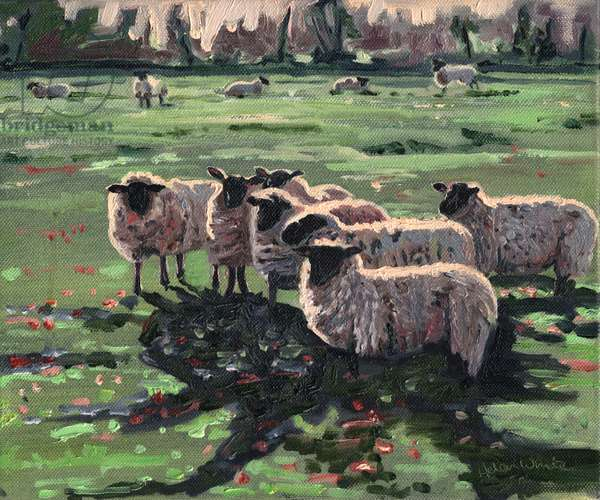 Curious Flock I, 2009, (oil on canvas)