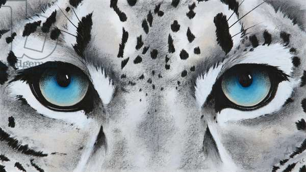 small snow leopard eyes, 2018, pastel and charcoal on paper
