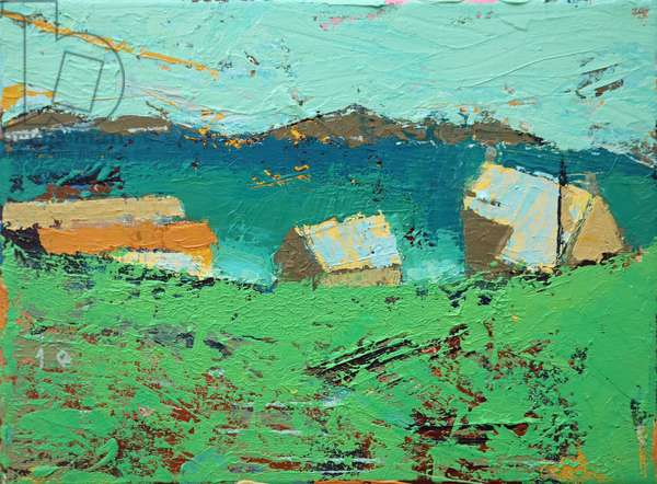 Farmstead Iona (acrylic on canvas)