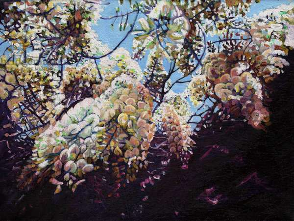 White Wisteria, 2012, (oil on canvas)
