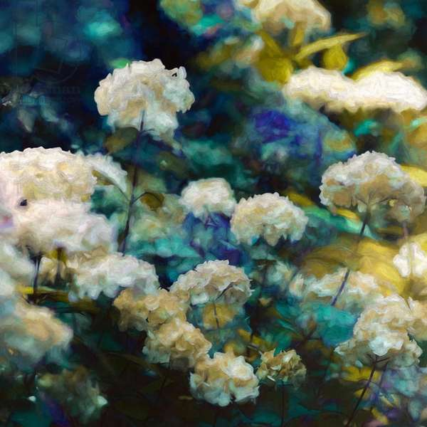 Heavenly Hydrangeas, 2020, (mixed media)