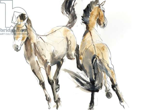 Horsing, 2013 (watercolour and pigment on paper)