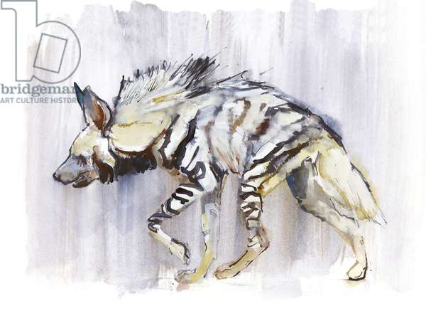 Striped Hyaena, 2010, (watercolour on paper)