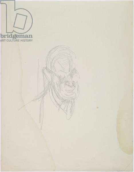 Head of Henri Matisse, September 1954 (pencil on paper)