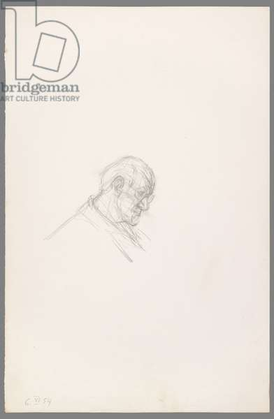 Head of Henri Matisse in Profile, 1954 (pencil on paper)
