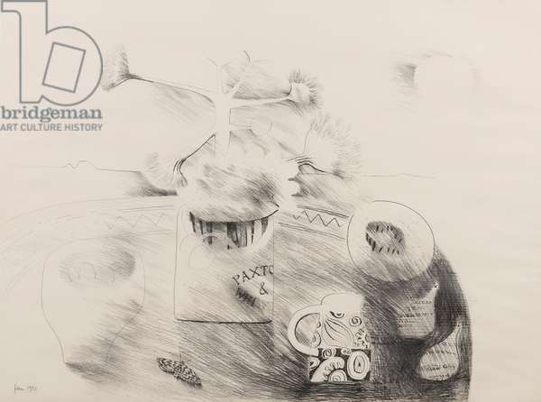 Table-top still-life, 1973 (pencil on paper)
