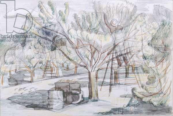 The Orchard (pencil & crayon)