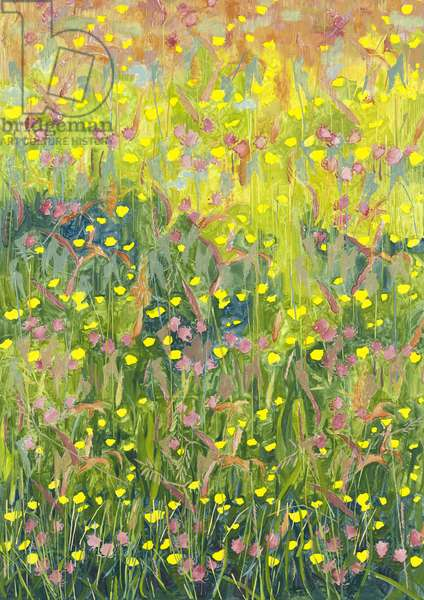Summer Meadow, 2012, (oil on canvas)