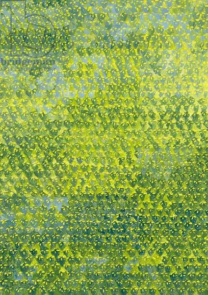 Daffodils, 2012, (oil on canvas)