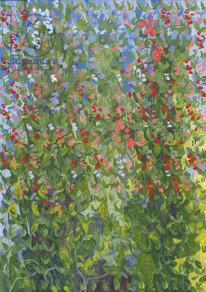 Sweet Peas, 2014 (oil on canvas)