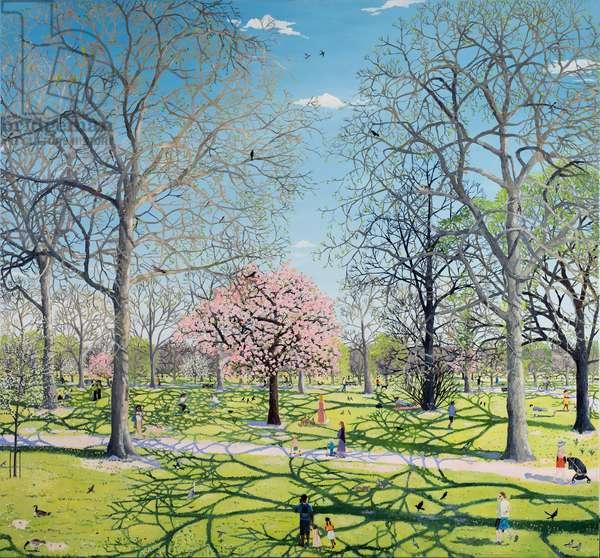 Spring park cherry blossom, 2020 (oil on canvas)