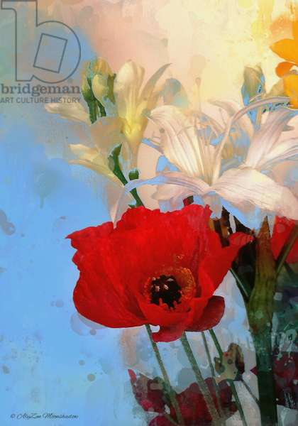 Poppy on blue, 2014, (digital mixed media phoneography)
