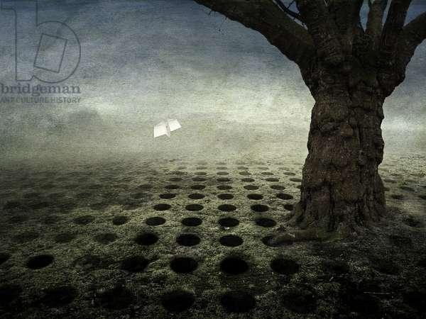 Empty holes