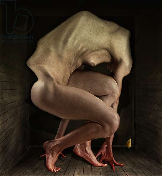 Shame,2012,(Photo manipulation)