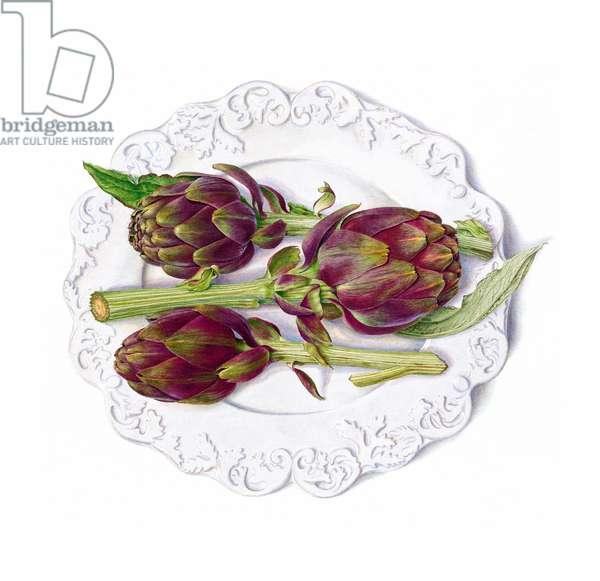 Artichoke 'Violetta'