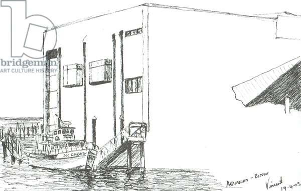 Aquarium Boston Mass, 2003, (ink on paper)