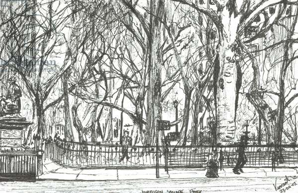 Madison square park New York, 2003, (ink on paper)