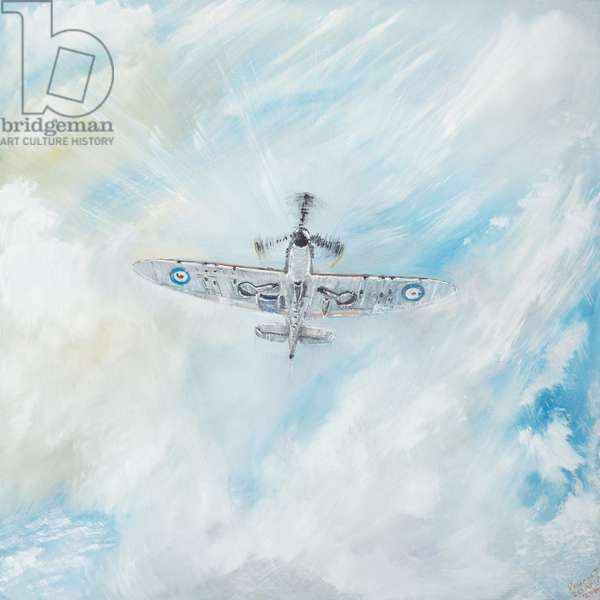 Supermarine Spitfire,  2014,  (oil on canvas)