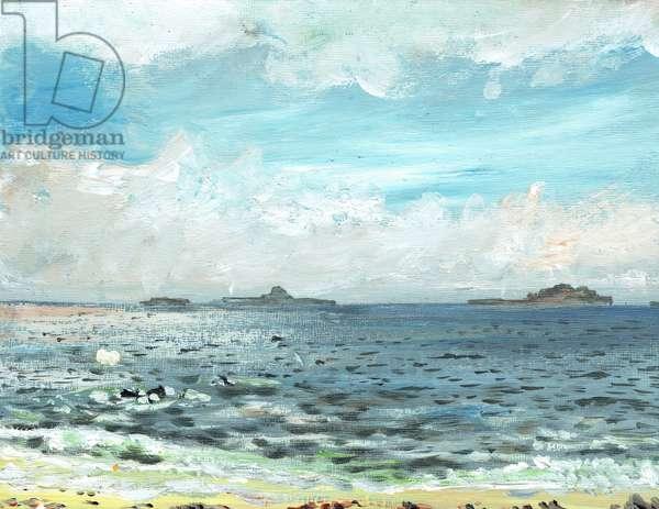 Iona beach, 2007, (acrylic on canvas board)