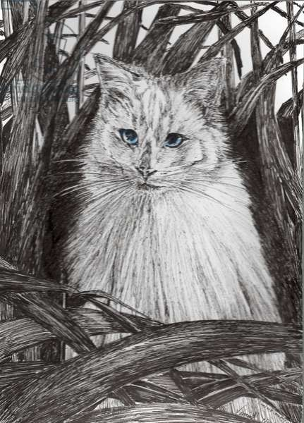 Jungle Monty, 2015, (ink on paper)