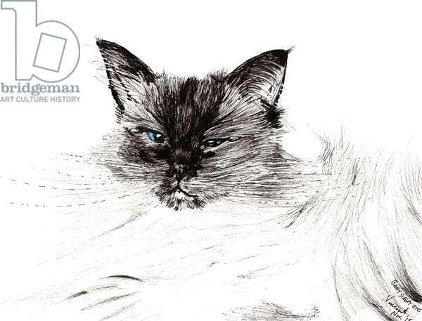 Sleepy eye, 2015, (ink on paper)