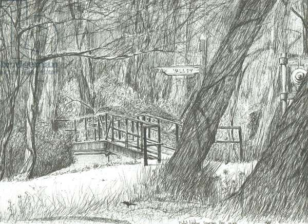 The old metal bridge, Bramhall park, 2004, (ink on paper)