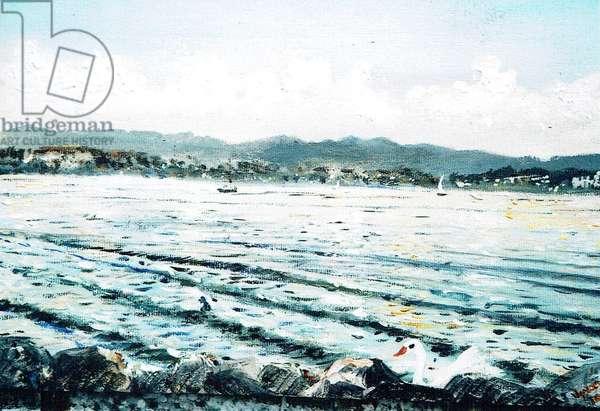 Swan on lake, 2010, (acrylic on canvas board)