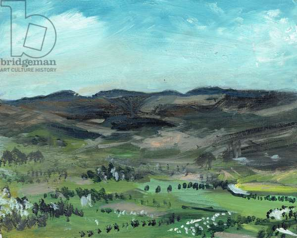 Cairngorms from Creag Dhubh, 2006, (acrylic on canvas board)