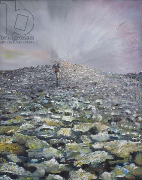 The 42nd Peak, 2012,  (oil on canvas)