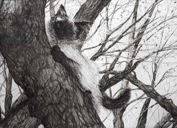 Up the apple tree, 2006 (ink on paper)