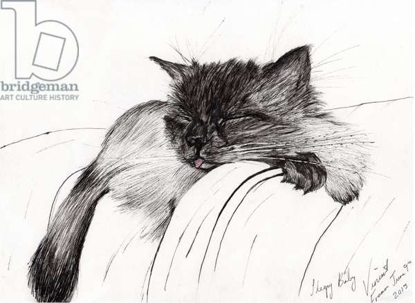 Sleepy Baby, 2013, (ink on paper)