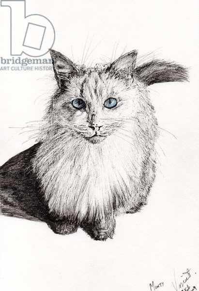 Monty, 2009, (ink on paper)