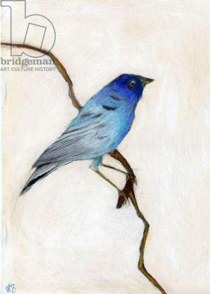 Little Blue, 2012, (oil pastel on paper)