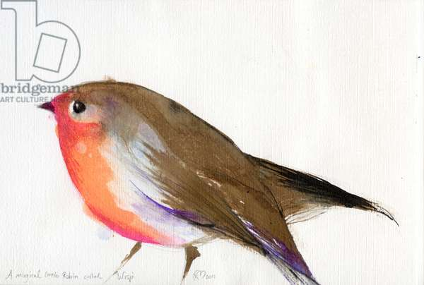 A magical little robin called Wisp, 2011, (ink on paper)