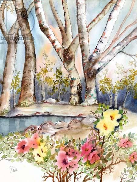Wild Rose Pond
