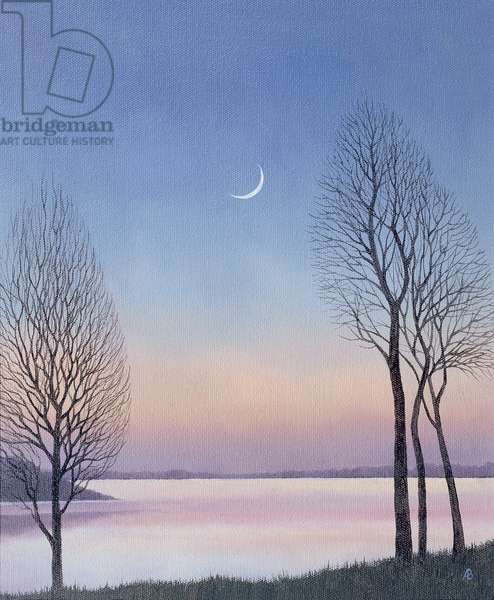 Dusk at Draycote, 2008 (oil on canvas)