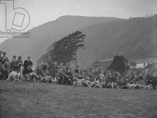 A view of the start of a hound trail, with the hounds having just been released, fells in the background, 1930s-60s (b/w photo)