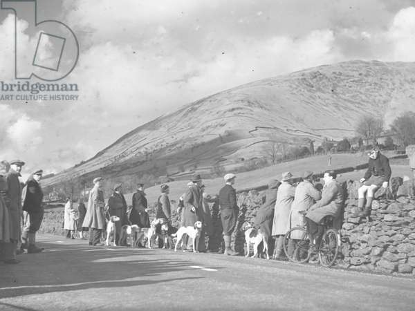 A view of people stood against a dry stone wall with hounds looking across farmland and fells, 1930s-60s (b/w photo)