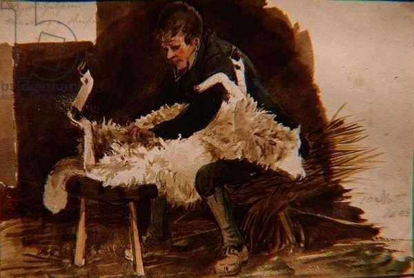 Major Gilpin Shearing a Sheep, 1808 (w/c on paper)