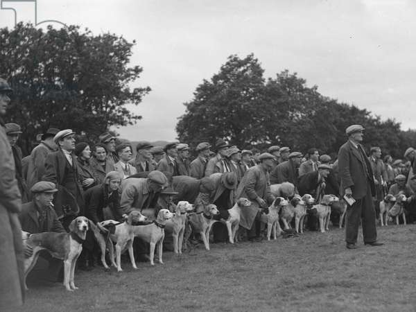 A view of the start of a hound trail with the dogs and their owners lined up waiting, 1930s-60s (b/w photo)
