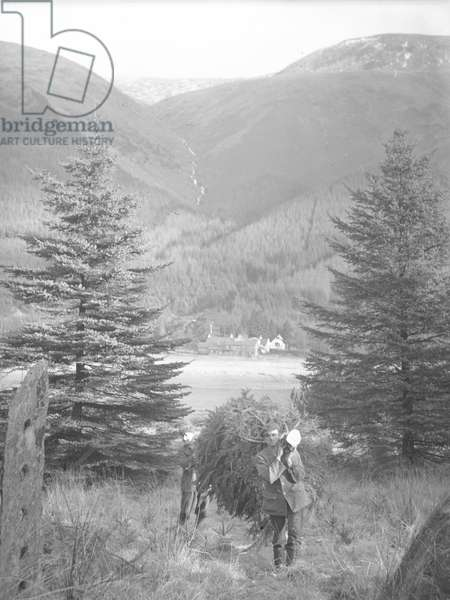 A view of a waterfall in the Lake District, 1930s-60s (b/w photo)