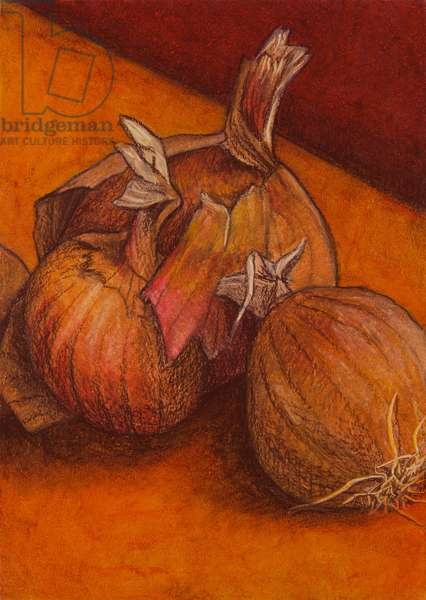 Onions, 2012 (oil pastel on paper)